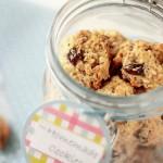 Crispy Oatmeal Cookies/ Keksići od karameliziranih zobenih pahuljica
